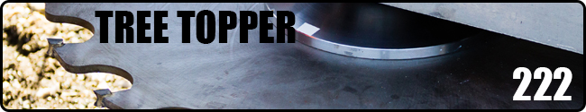 Tree Topper 222